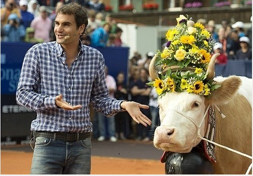 roger and cow
